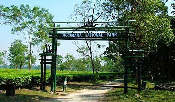 Entry Gate of Gorumara National Park